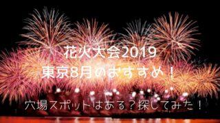大会花火2019
